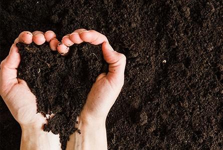 Social and environmental responsibility